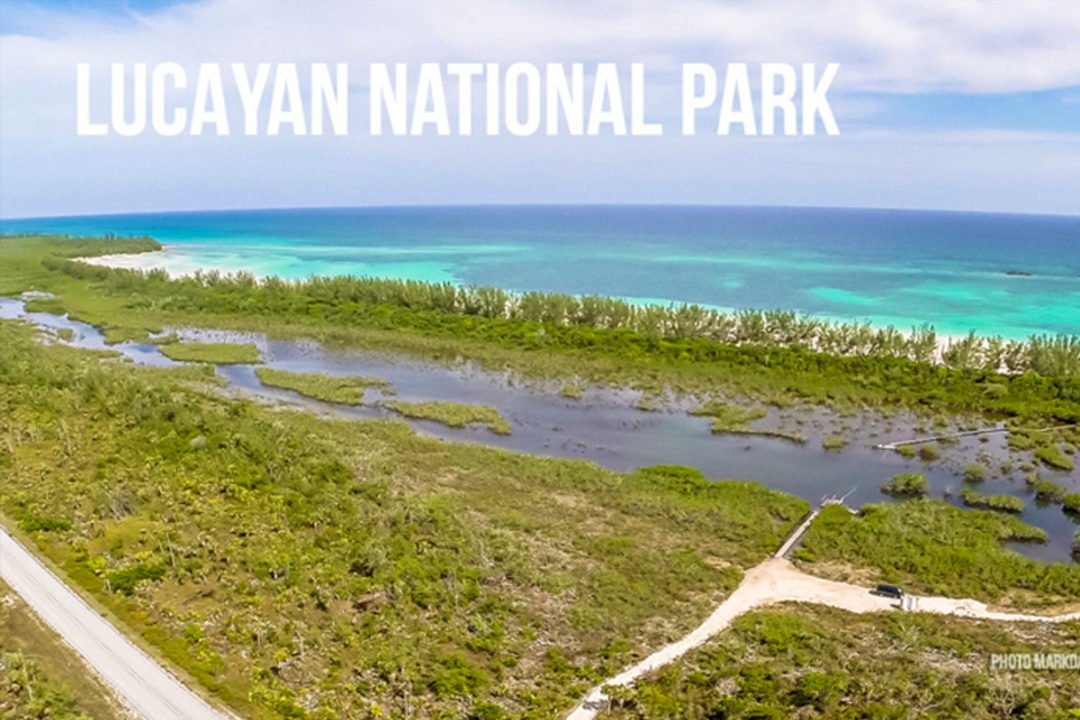 Bahamas Parks Commercial